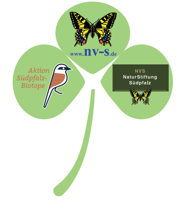Logo Verbindung NVS, NVS Stiftung und Aktion Südpfalz-Biotope
